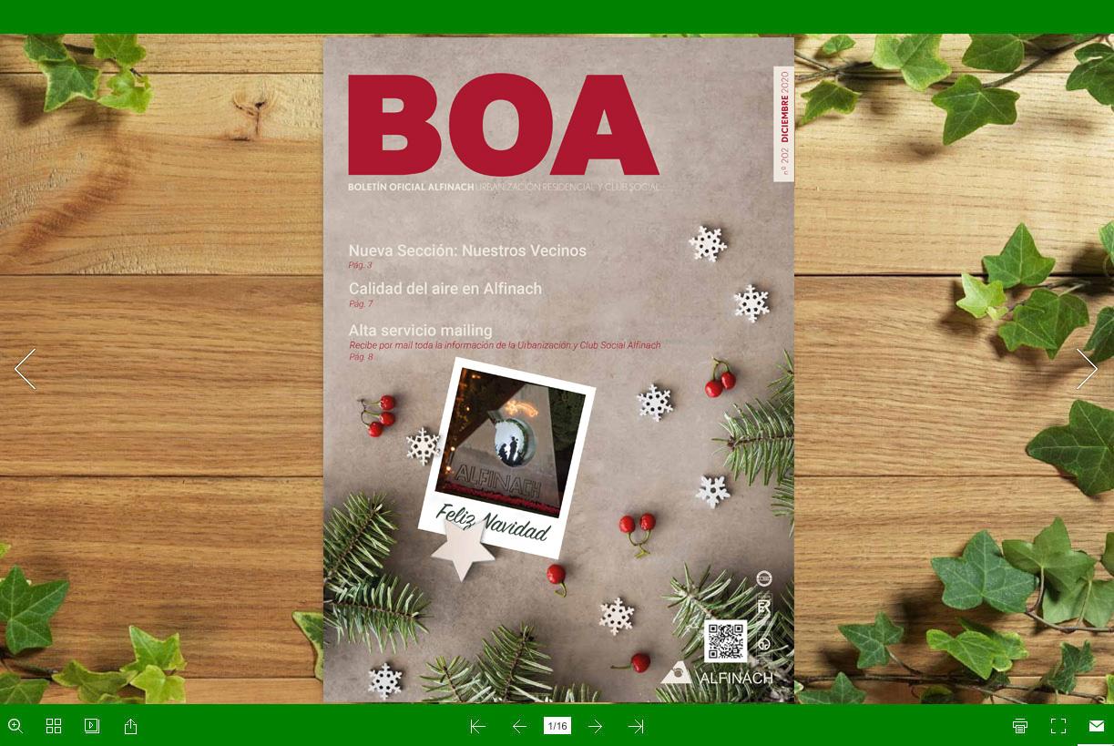 Nuevo B.O.A – nº202<br>Diciembre 2020